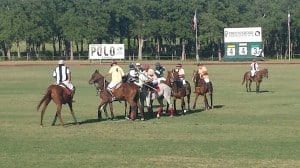 Polo on the Lawn 2014