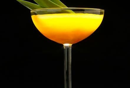 Pisco Porton 1684 Cocktail Recipe
