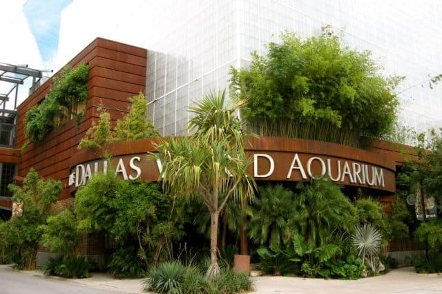 Dallas world aquarium coupons 2018